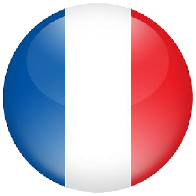Servizi di Seo Copywriting in lingua francese